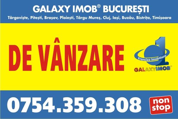 GLX388B. Uta Vlad
