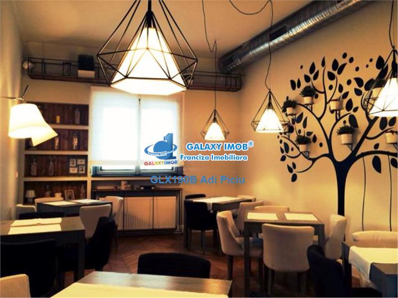 Inchiriere vila cu curte superba Cismigiu - Pretabila restaurant/birou