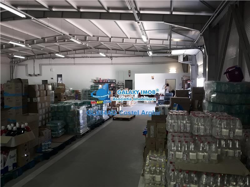 Vand hala industrial/comercial la 5 km de Pitesti