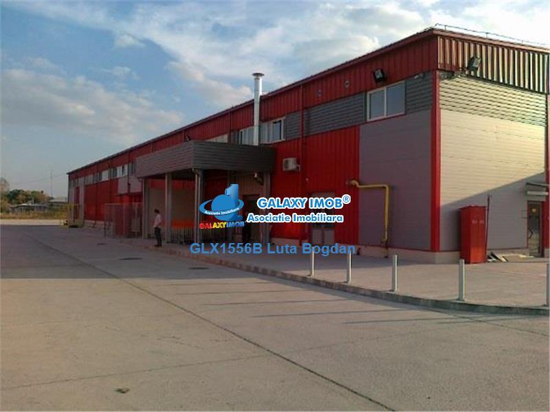 Inchiriere hala industriala, birouri si platforma betonata.