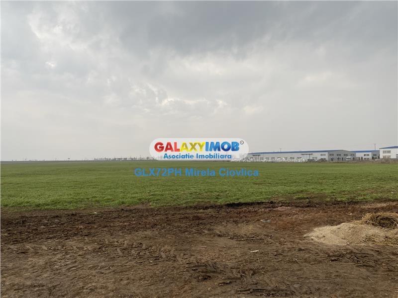 Vanzare teren intravilan Baicoi zona industriala