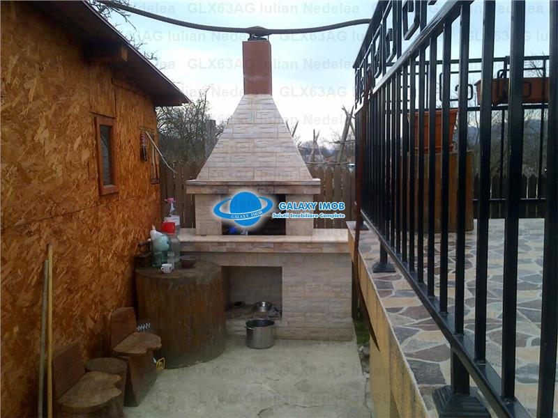 De vanzare vila de lux la 35 km pitesti zona de vis BRADET
