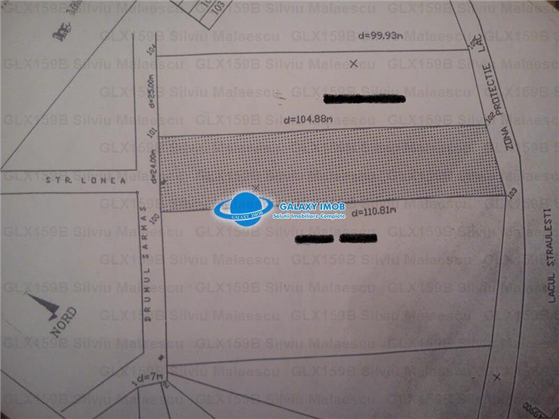 Straulesti 2506 mp LAC - 2 Cocosi