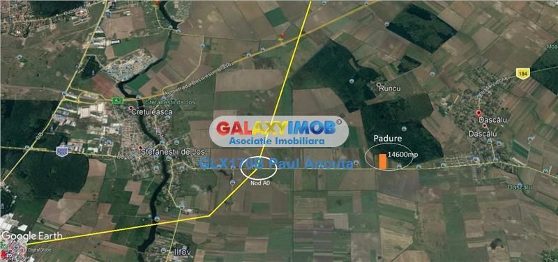 Teren Stefanesti Dascalu  la drum Judetean 14600 mp latura Padure