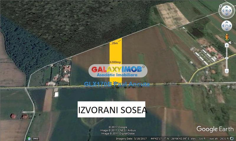 Teren  Ciolpani Izvorani 6300 mp la sosea si Padure