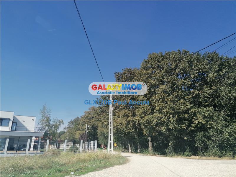 Teren Balotesti Dumbraveni 1000 mp intre  Padure si Lac