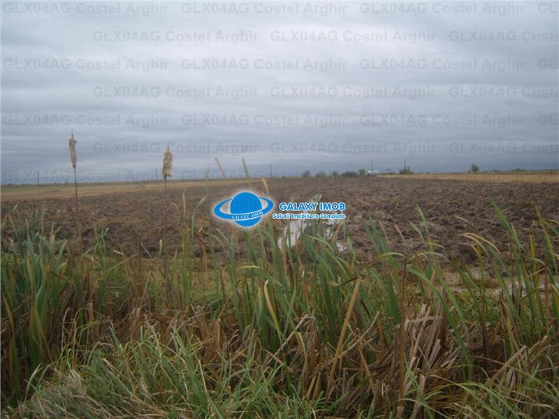 vand teren extravilan agricol 34 ha, jud Dambovita