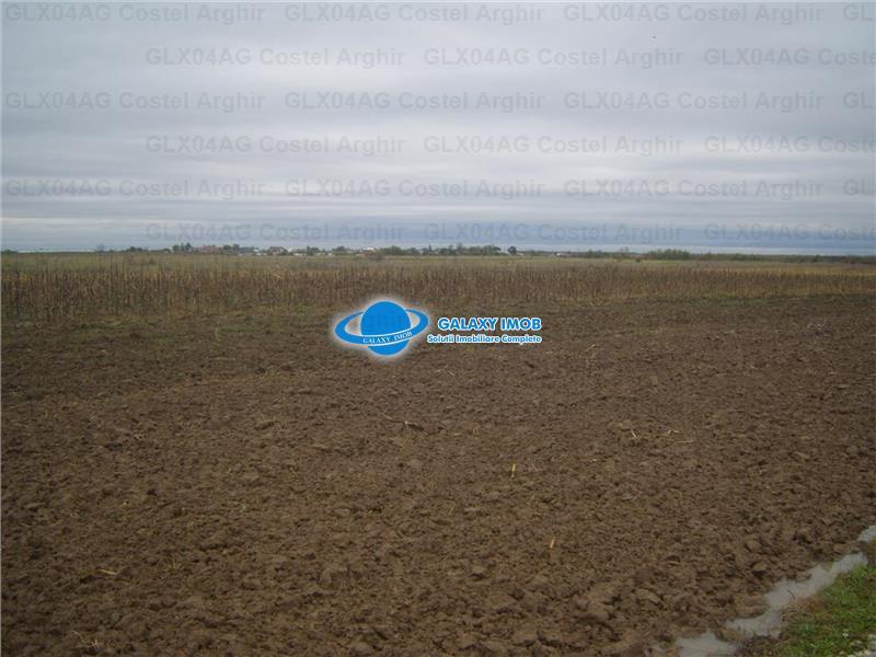 Vand teren extravilan agricol in judetul Olt