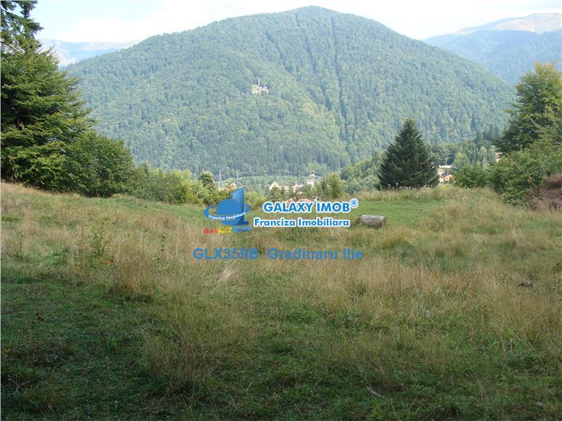 Vanzare teren Sinaia / PustniculuiSitarilor