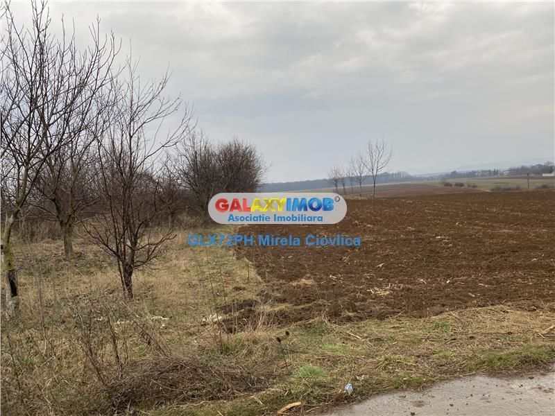 Vanzare teren industrial Baicoi