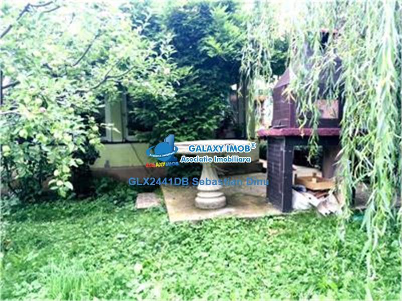 Vanzare vila P+1 in Malu cu Flori
