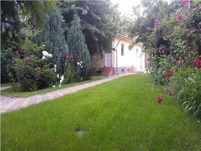 Casa de inchiriat, curte mare, garaj, Baneasa