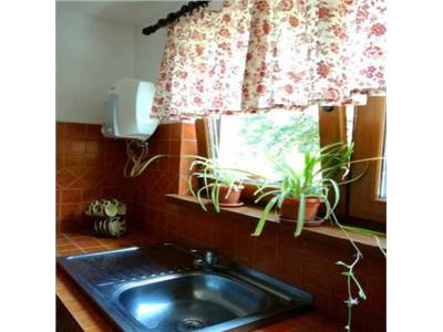 Casa ecologica p+1 cu 3 camere de inchiriat in colentina