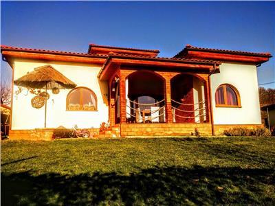 Case vile de vanzare ale agentului imobiliar aurelian - Terenes casa rural ...