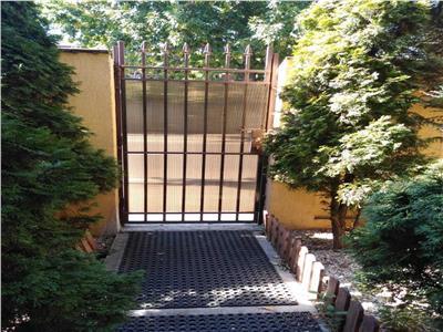 Casa parter si etaj ideala birouri Brancoveanu / Alunisului