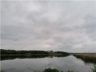 Vand teren Balotesti Lac str Florilor cu Iris 1600 mp