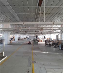 Inchiriere spatii productie/depozitare 300-5000mp Parc Romanescu 1 Mai