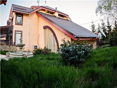 Inchiriere vila de exceptie - Iancu Nicolae (Jolie Ville)