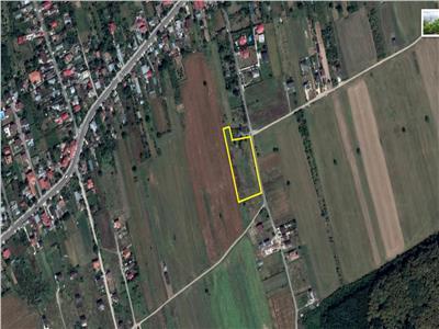 Vand teren intravilan Ciofliceni Snagov Comision 0%