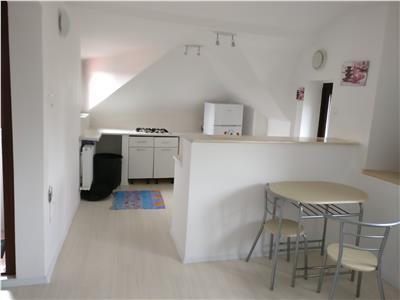 Garsoniera dubla 2 camere Drumul Sarii etaj 2 (mansarda) in vila 38 mp