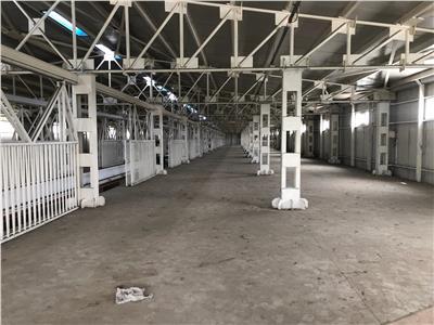 Inchiriere hale productie si depozitare - birori 10 - 5000 mp pipera