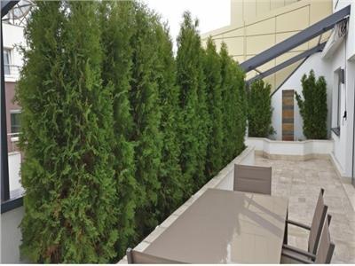 Penthouse duplex 4 camere dorobanti floreasca bloc nou terasa 40 mp