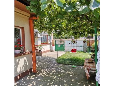 Casa de vanzare parcul Tineretului, Brancoveanu, str. Martisor
