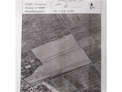 Vanzare teren extravilan arabil 13.840 mp Sat Tanganu-Cernica
