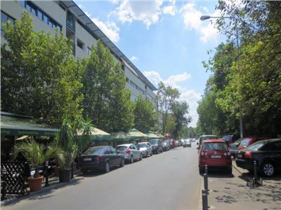 Teren de vanzare parcul Carol cu autorizatie casa, Candiano Popescu