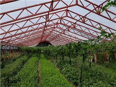 Vanzare Sera industriala Baicoi Prahova cu proiect si autorizatie