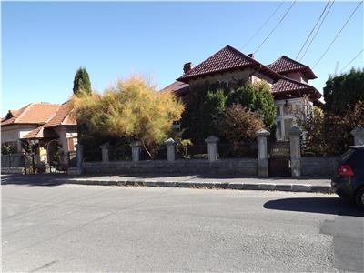 Vanzare  domeniu  vila  cu  gradina generoasa,  Campulung Arges