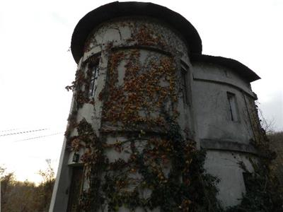 Vanzare casa de patrimoniu(conac) Aninoasa-Viforata