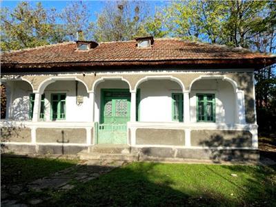 Vanzare casa traditionala, Titu, exterior nord