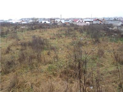 Vanzare teren 1300 mp in Targoviste str Calafat vis-a-vis de Showmine