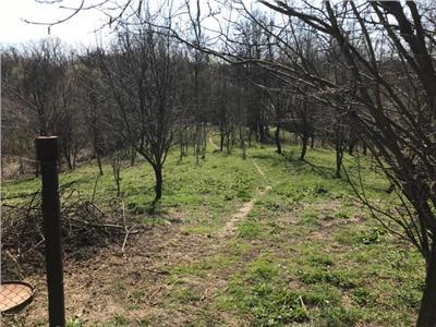 Vanzare teren 1400 mp intravilan, in Filipestii de Padure, Prahova