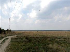 Vanzare teren agricol Targoviste exterior