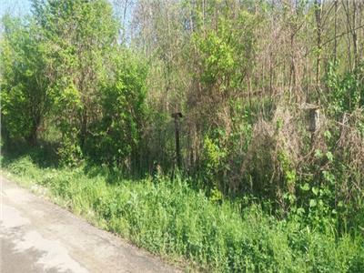 Vanzare teren construibil in Comuna Razvad, asfalt, zona linistita