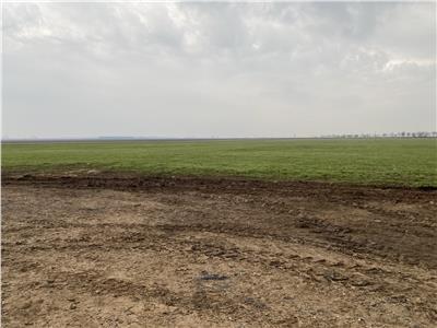 Vanzare teren intravilan Baicoi Prahova, zona industriala