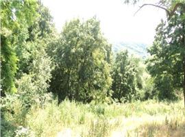 Vanzare teren intravilan Manastirea Dealu