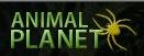 logo_animalplanet.jpg